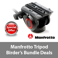 Manfrotto Tripod Bundles